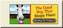 Order Spalding Fly Predators online.