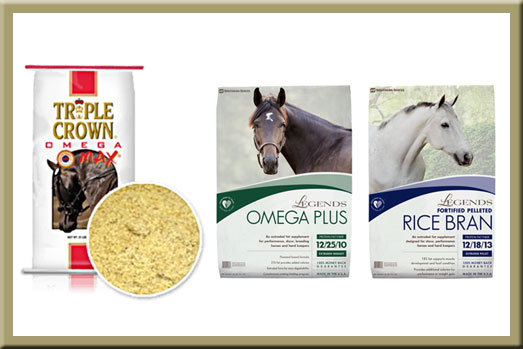 January & February Horse Feed Specials at North Fulton Feed & Seed