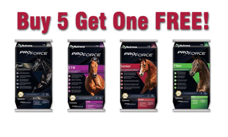 Buy 5 Get 1 FREE on Nutrena ProForce Premium Horse Feed at North Fulton Feed & Seed in Alpharetta, GA
