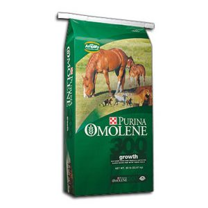 Purina Omolene 300 Horse Feed