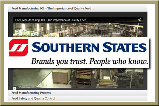 Southern States Horse Feed Videos