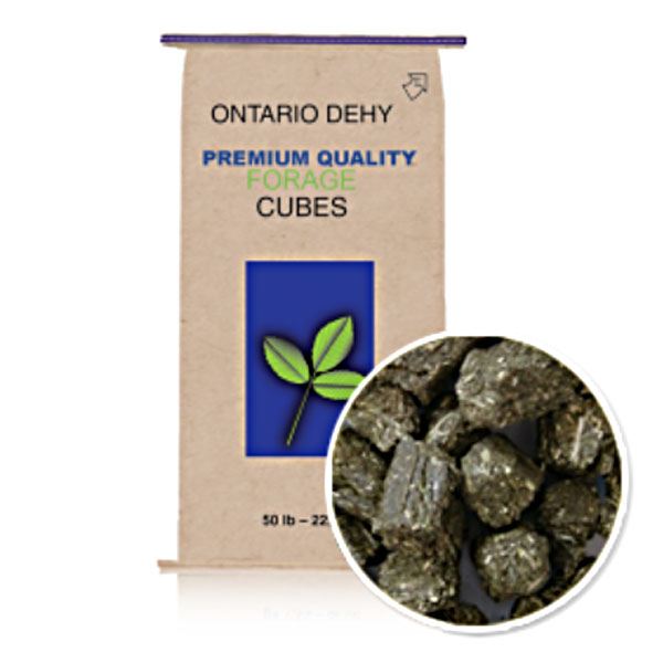 Triple Crown Ontario Dehydrated Timothy Balance Cubes 50 lb
