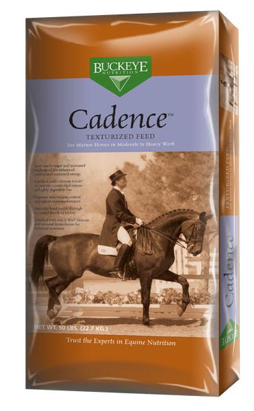 BUCKEYE Cadence Texturized Horse Feed