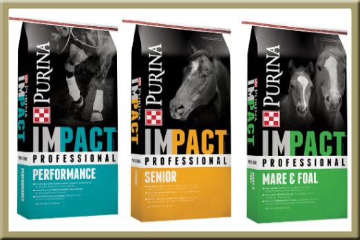 Purina IMPACT Horse Feed Sale - North Fulton Feed & Seed