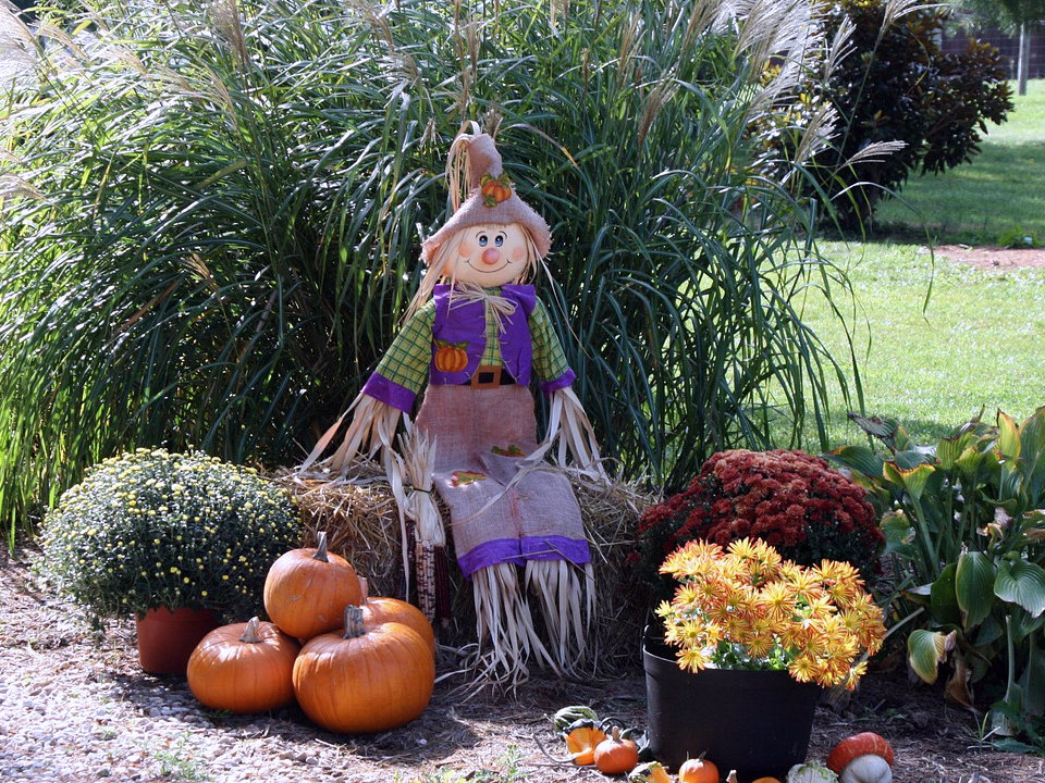 Straw and hay at North Fulton Feed & Seed for Halloween decorations