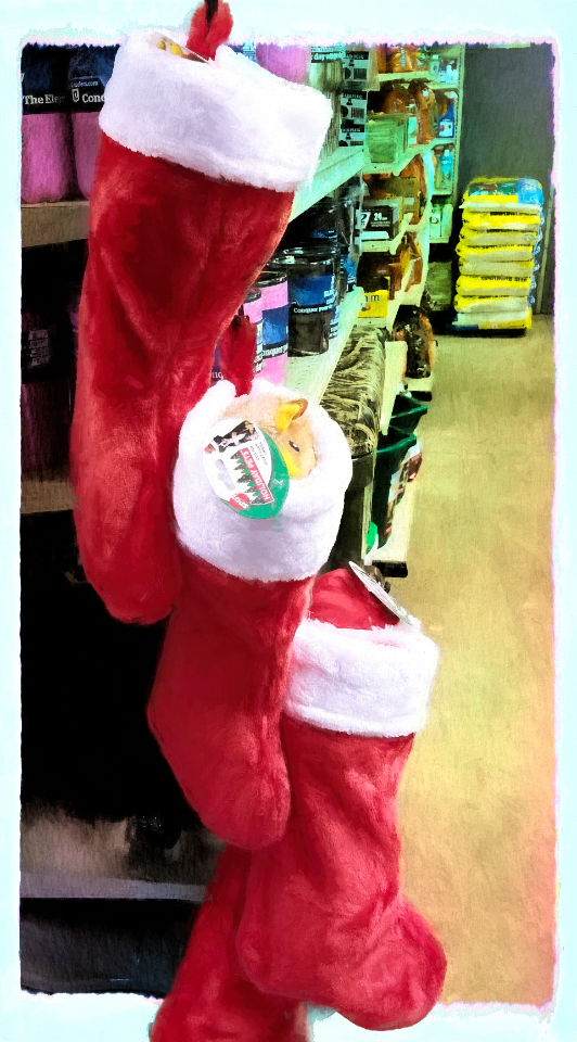 Get your Christmas stocking for your pets at North Fulton Feed & Seed.