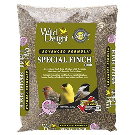 Special Finch Feed