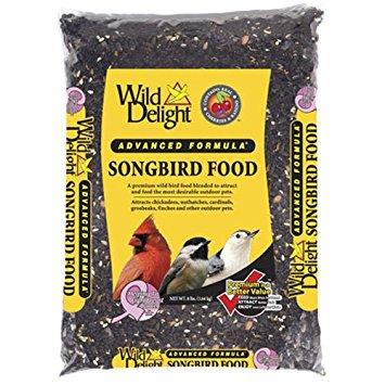 Songbird Food