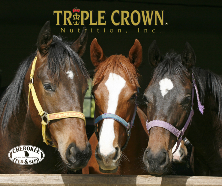 Save $2 on Triple Crown Horse Feeds