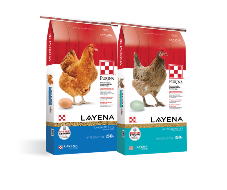 Layena Pellets or Crumbles | Purina Premium Poultry Feed available at North Fulton Feed & Seed, Alpaharetta, GA
