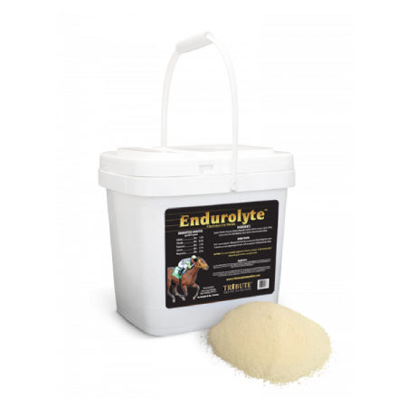 Endurolyte Electrolyte