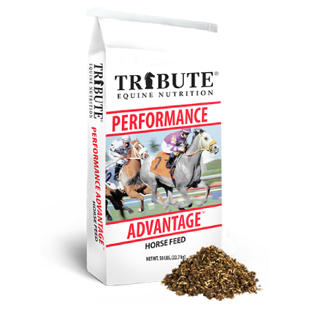 Performance Advantage