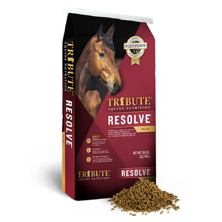Tribute Resolve horse feed
