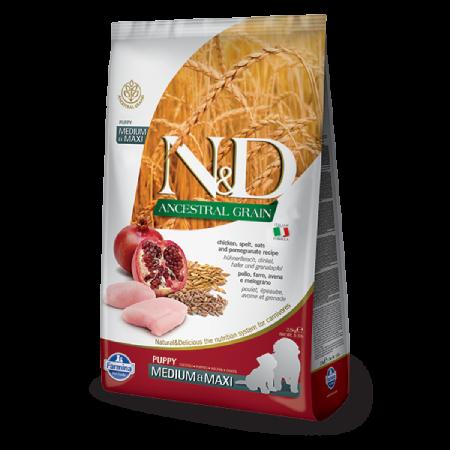 Farmina N&D Ancestral Grain: Chicken Pomegranate Puppy Medium & Maxi