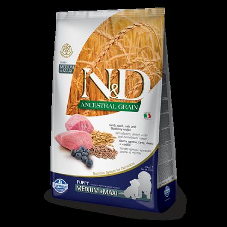 Farmina N&D Ancestral Grain: Lamb Blueberry Puppy Medium & Maxi